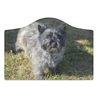 Black Cairn Terrier Door Sign