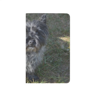 Black Cairn Terrier Journals