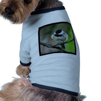 Black Capped Chickadee Bird Dog T Shirt