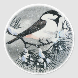 Black Capped Chickadee Bird Winter Round Sticker