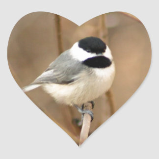 Black Capped Chickadee Heart Sticker