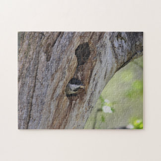 Black-capped chickadee jigsaw puzzle