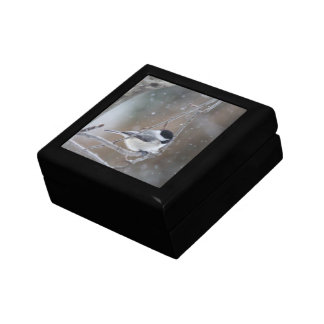 Black-capped Chickadee - Songbird Gift Box