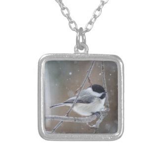 Black-capped Chickadee - Songbird Silver Plated Necklace