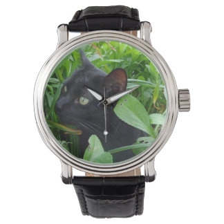 Black Cat and Foliage Watch