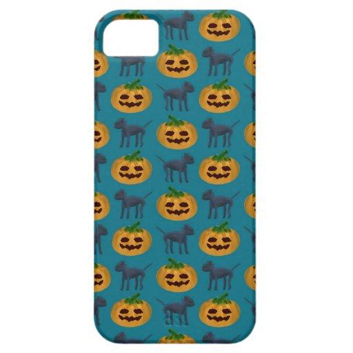 Black Cat and Halloween Pumpkin Pattern iPhone 5 Cases