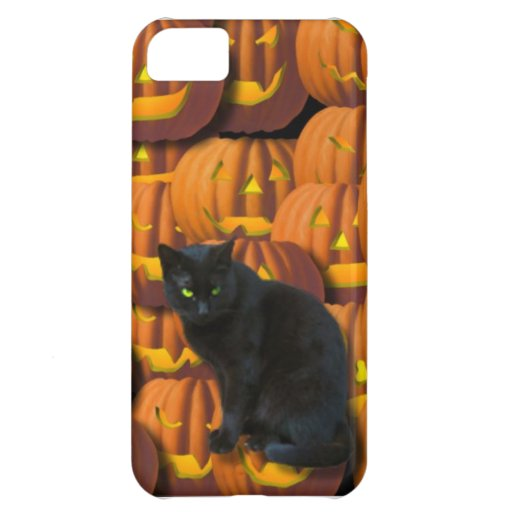 Black cat and pumpkins iPhone 5C covers