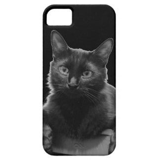 Black Cat Barely There iPhone 5 Case