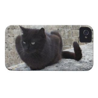 Black Cat Blackberry Bold case