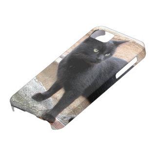 Black Cat Bone iPhone 5 Case