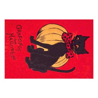 Black Cat Bowtie Pumpkin Vintage Photograph
