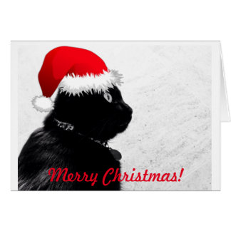 Black Cat Christmas Card
