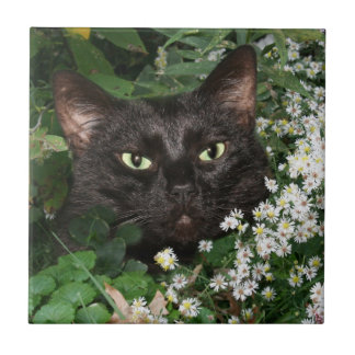 Black cat face tile