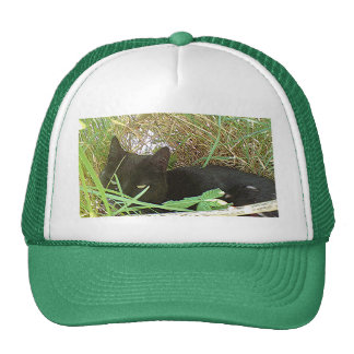 Black Cat Hiding in Grass Trucker Hats