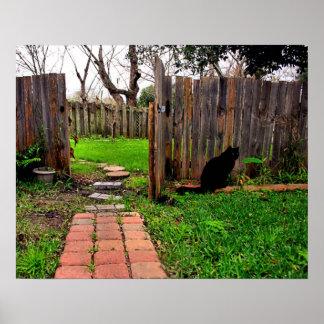 Black Cat In The Garden Poster