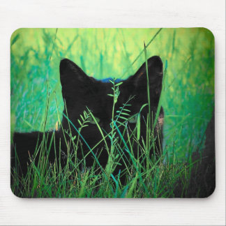 Black cat in the grass mouse pad