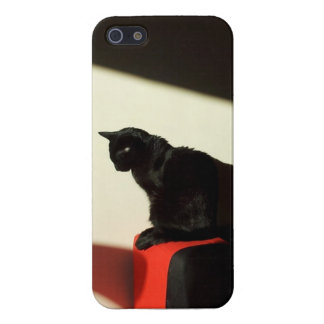Black cat in the sunshine cover for iPhone 5/5S