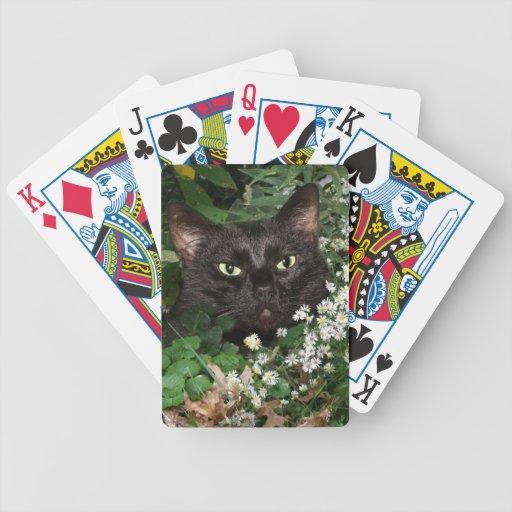Black cat in wildflowers card deck