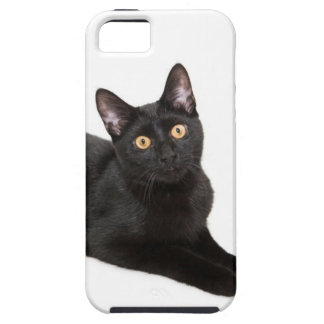 Black cat iPhone 5 cases