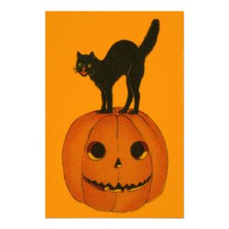 Black Cat Jack O Lantern Pumpkin Orange Photo
