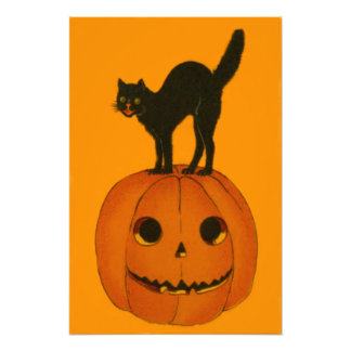 Black Cat Jack O Lantern Pumpkin Orange Photo Print