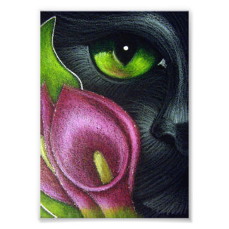 BLACK CAT MAGENTA CALLA LILY FLOWERS PRINT