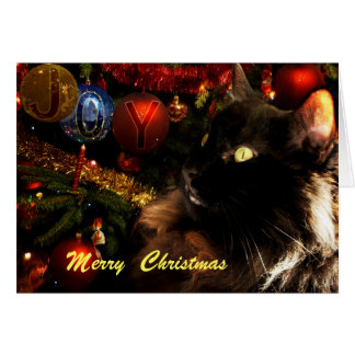 Black Cat Merry Christmas Card