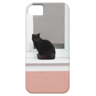 Black Cat on Coral iPhone 5 Cover