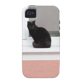 Black Cat on Coral Vibe iPhone 4 Cover