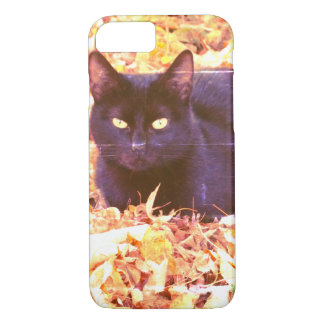 Black Cat Photo Apple iPhone 8/7, Barely There iPhone 8/7 Case