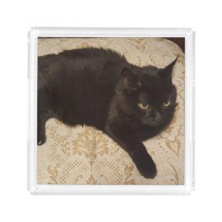 Black Cat Roxie Acrylic Tray