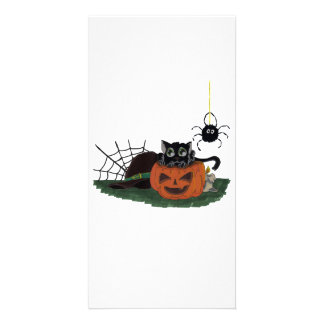 Black Cat sits on a Jack o Lantern with Spider Personalised Photo Card