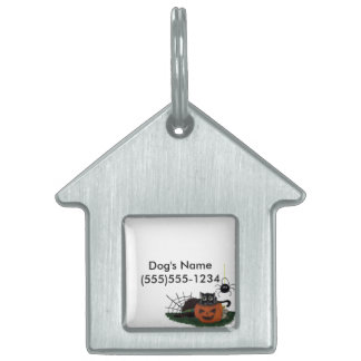 Black Cat sits on a Jack o Lantern with Spider Pet Name Tag