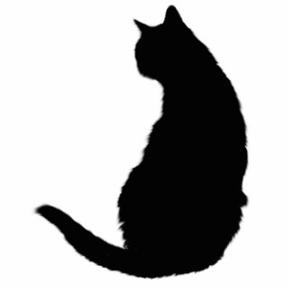Black Cat Standing Photo Sculpture