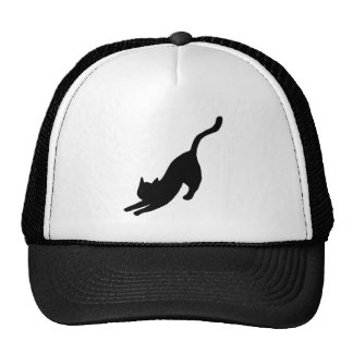 Black Cat Stretching Cap