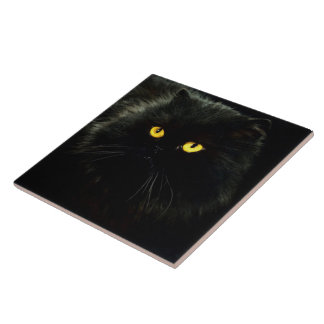 Black Cat Tile