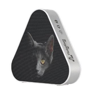 Black Cat Unleashed Speaker