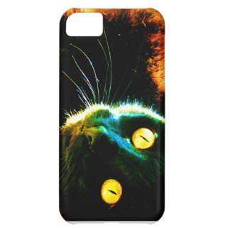 Black Cat Watching Case For iPhone 5C