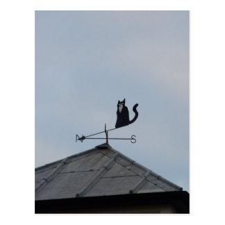 Black Cat  Weather Vane Postcard