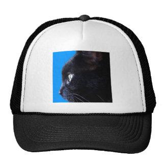 Black Cat with blue sky ~ Mesh Hat