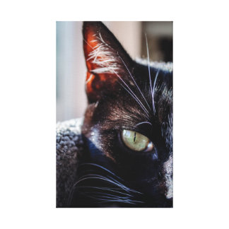 Black Cat with Green Eyes Wrapped Canvas