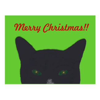 "Black cat with green, red  ""Merry Christmas"" Postcard"