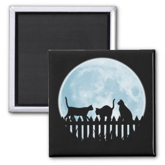 Black Cats and Blue Moon Magnet