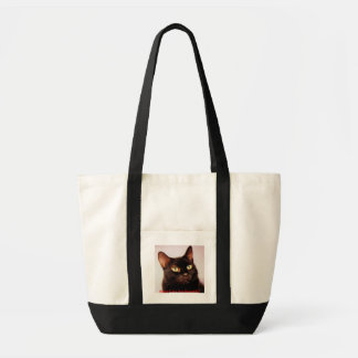 Black Cats Are Beautiful  Bag