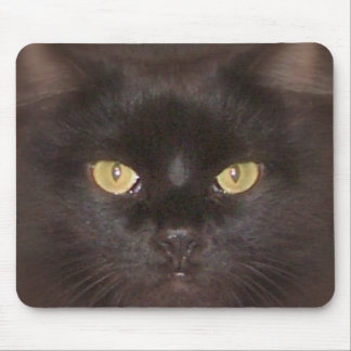 black cats eyes mouse pad