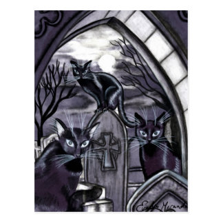 Black Cats Full Moon Graveyard Postcard