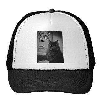Black cats love cap