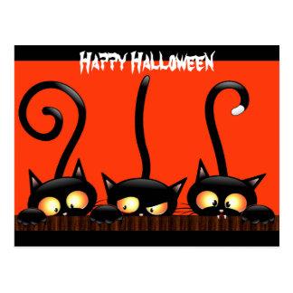 "Black Cats Say ""Happy Halloween"" Postcard"