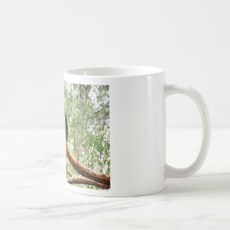 BLACK COCKATOO QUEENSLAND AUSTRALIA COFFEE MUG