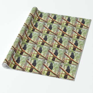 BLACK COCKATOO QUEENSLAND AUSTRALIA WRAPPING PAPER